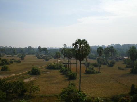 カンボジア5